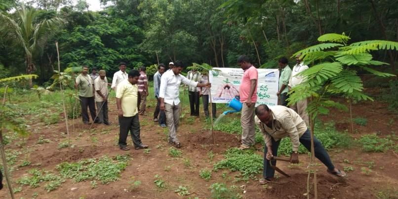 """Gangavaram Port Plants 2500 Saplings Under """"Vanam-Manam"""